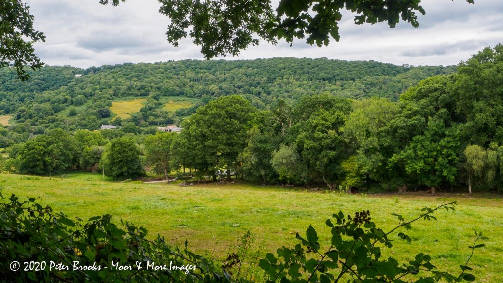 Image of Image of landscape near Lustleigh