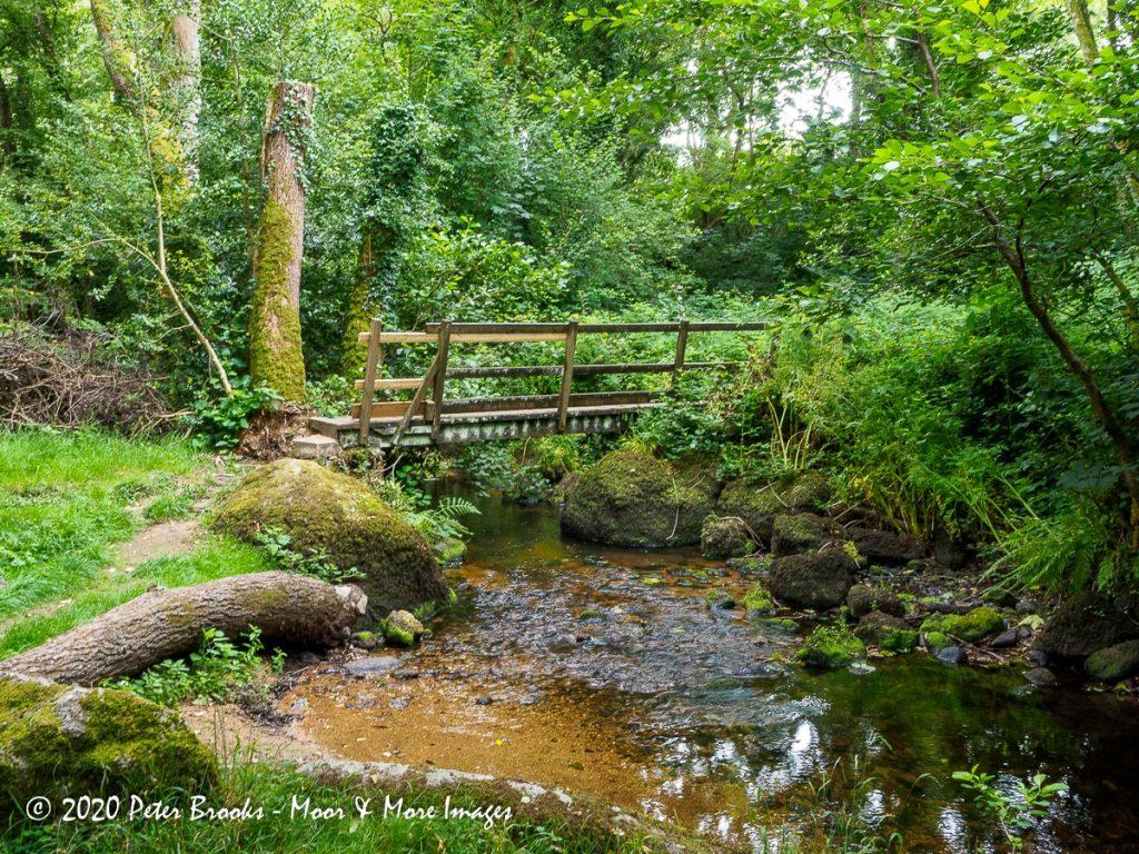 Image of wooden footbridge